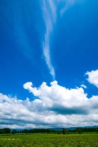 八ヶ岳農場牧草地と夏空の写真素材 [FYI04115384]