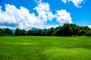 八ヶ岳農場芝生広場と夏空の写真素材 [FYI04115401]