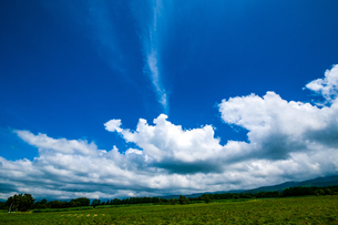 八ヶ岳農場牧草地と夏空の写真素材 [FYI04115407]