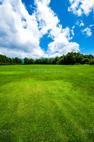 八ヶ岳農場芝生広場と夏空の写真素材 [FYI04115450]