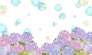 紫陽花とシャボン玉のイラスト素材 [FYI04115453]