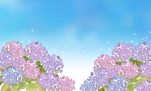 紫陽花と青空のイラスト素材 [FYI04115454]
