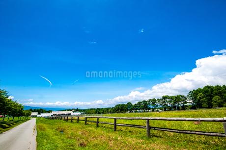 八ヶ岳農場牧草地と夏空の写真素材 [FYI04115483]