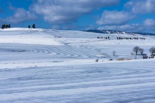 美瑛の丘の融雪作業の写真素材 [FYI04115732]