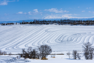 美瑛の丘の融雪作業の写真素材 [FYI04115742]