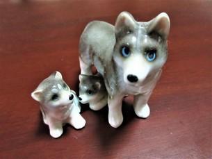 犬の親子の写真素材 [FYI04115776]