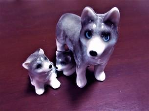 犬の親子の写真素材 [FYI04115777]