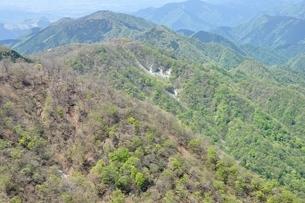春の鍋割山稜と檜岳山稜の写真素材 [FYI04115869]