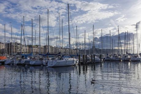 スイス、ジュネーブのレマン湖風景の写真素材 [FYI04115941]