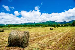 八ヶ岳農場牧草地と夏空の写真素材 [FYI04115960]