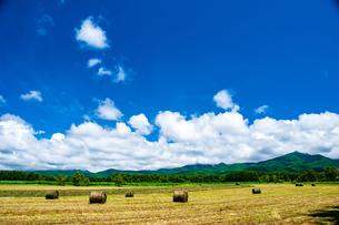 八ヶ岳農場牧草地と夏空の写真素材 [FYI04115961]