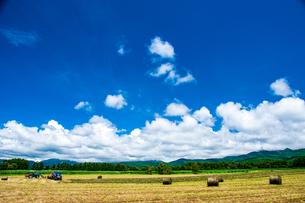 八ヶ岳農場牧草地と夏空の写真素材 [FYI04115962]
