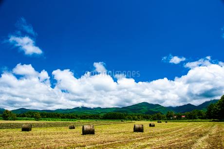 八ヶ岳農場牧草地と夏空の写真素材 [FYI04115963]