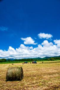 八ヶ岳農場牧草地と夏空の写真素材 [FYI04115964]