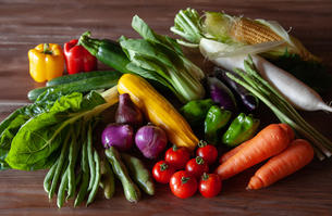 野菜の写真素材 [FYI04115968]