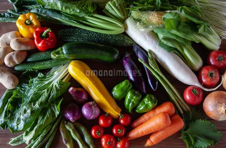 野菜の写真素材 [FYI04115970]