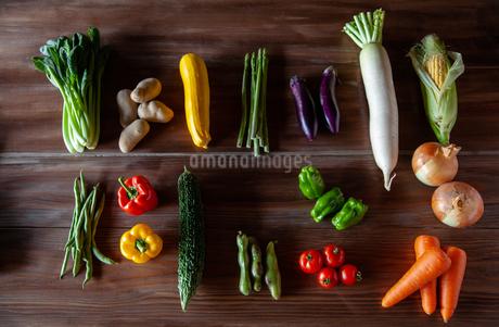 野菜の写真素材 [FYI04115973]