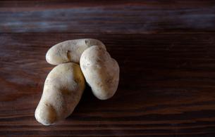ジャガイモの写真素材 [FYI04115978]