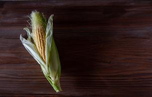 トウモロコシの写真素材 [FYI04115988]
