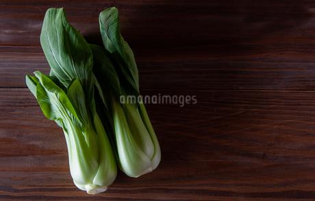 チンゲン菜の写真素材 [FYI04115990]