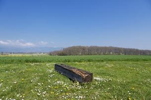 スイス、ジュネーブの田園風景の写真素材 [FYI04116032]