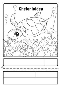 ウミガメ ぬりえ 応募用紙のイラスト素材 [FYI04116153]