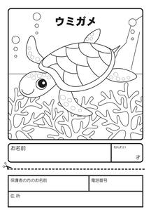 ウミガメ ぬりえ 応募用紙のイラスト素材 [FYI04116154]