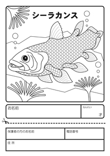 シーラカンス ぬりえ 応募用紙のイラスト素材 [FYI04116156]