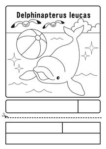 シロイルカ ぬりえ 応募用紙のイラスト素材 [FYI04116161]