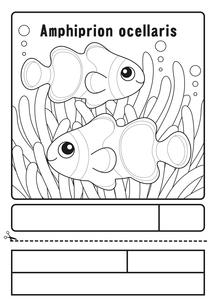 カクレクマノミ ぬりえ 応募用紙のイラスト素材 [FYI04116169]