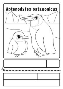 オウサマペンギン ぬりえ 応募用紙のイラスト素材 [FYI04116171]