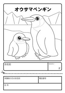オウサマペンギン ぬりえ 応募用紙のイラスト素材 [FYI04116172]
