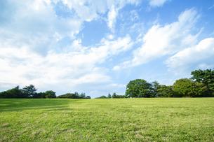 青空を背景にした無人の緑の丘。開放的、爽やか、自然イメージの背景素材の写真素材 [FYI04116213]