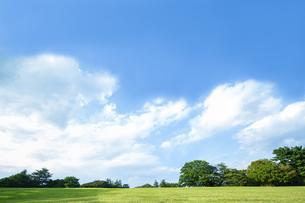青空を背景にした無人の緑の丘。開放的、爽やか、自然イメージの背景素材の写真素材 [FYI04116223]