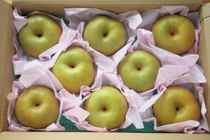 箱詰めの梨の写真素材 [FYI04116538]