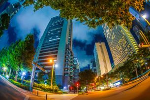 東京新宿の高層ビル群の夜景の写真素材 [FYI04116615]