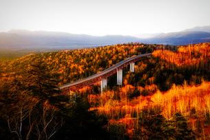 秋の三国峠の写真素材 [FYI04116823]