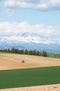 春の畑と残雪の山並みの写真素材 [FYI04116837]
