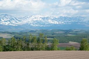 春の畑作地帯と残雪の山並みの写真素材 [FYI04116838]