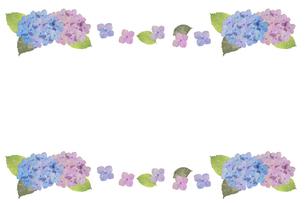 紫陽花フレームのイラスト素材 [FYI04116868]