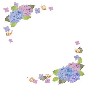 紫陽花とカタツムリのフレームの写真素材 [FYI04116871]