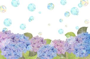 紫陽花とシャボン玉のイラスト素材 [FYI04117062]