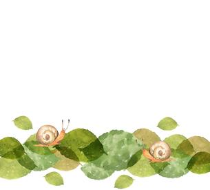 かたつむりと葉っぱのイラスト素材 [FYI04117065]