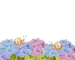 紫陽花とカタツムリのイラスト素材 [FYI04117066]