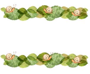 かたつむりと葉っぱのイラスト素材 [FYI04117068]