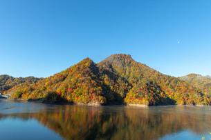 北海道 札幌湖の紅葉の写真素材 [FYI04117579]