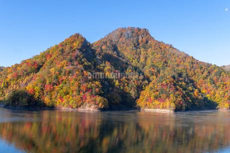 北海道 札幌湖の紅葉の写真素材 [FYI04117580]