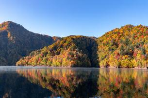 北海道 札幌湖の紅葉の写真素材 [FYI04117581]