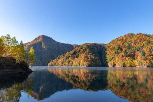 北海道 札幌湖の紅葉の写真素材 [FYI04117582]