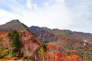 北海道 層雲峡の紅葉の写真素材 [FYI04117584]